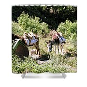 Village Transportation Shower Curtain by Michael Peychich