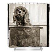 Vintage Puppy Bath Shower Curtain by Edward Fielding