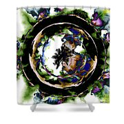 Visions Echo In The Crystal Ball Shower Curtain by Elizabeth McTaggart