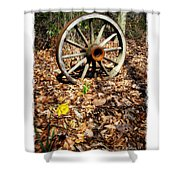 Wagon Wheel Daffodil Shower Curtain by Brian Wallace