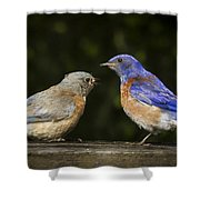 Wait You Ate My Leg Shower Curtain by Jean Noren