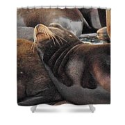 Wake Me When The Herring Arrive Shower Curtain by Randy Hall
