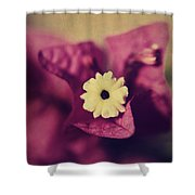 Waking Up Happy Shower Curtain by Laurie Search