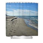 Walking The Beach Shower Curtain by Sandy Keeton