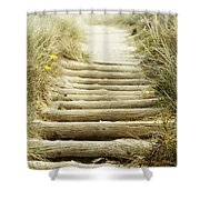 Walkway To Beach Shower Curtain by Les Cunliffe