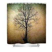 Waltz Of A Tree Shower Curtain by Taylan Soyturk