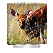 Wary Shower Curtain by Heather Applegate