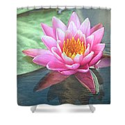 Water Lily Shower Curtain by Sandi OReilly