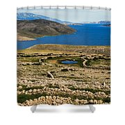 Watering Place Shower Curtain by Davorin Mance