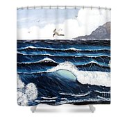 Waves And Tern Shower Curtain by Barbara Griffin