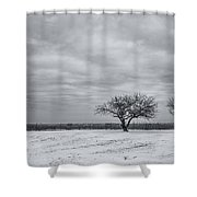 Weeping Souls Of Winter Desires Shower Curtain by Evelina Kremsdorf
