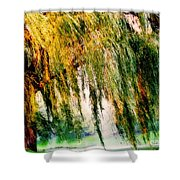 Weeping Willow Tree Painterly Monet Impressionist Dreams Shower Curtain by Carol F Austin