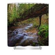 West Humbug Creek Shower Curtain by Everet Regal