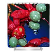 Wet Berries Shower Curtain by Kaye Menner