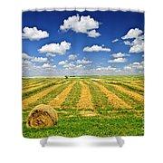 Wheat Farm Field And Hay Bales At Harvest In Saskatchewan Shower Curtain by Elena Elisseeva