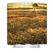 Wheat Fields Of Switzerland Shower Curtain by Debra and Dave Vanderlaan