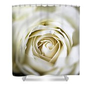 Whie Rose Softly Shower Curtain by Garry Gay