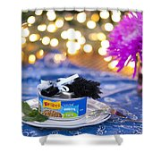 Whiskers Special Birthday Pate Shower Curtain by Juli Scalzi