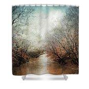 Whisper Of Winter Shower Curtain by Jai Johnson