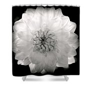 White Magic Shower Curtain by Karen Wiles