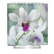 White Orchid Shower Curtain by Kim Hojnacki
