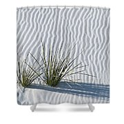 White Sands Grasses Shower Curtain by Steve Gadomski