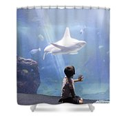 White Shark And Young Boy Shower Curtain by David Smith