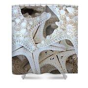 White Starfish Shower Curtain by Carol Groenen