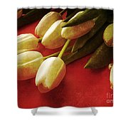 White Tulips Over Red Shower Curtain by Edward Fielding