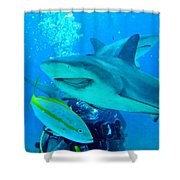 Who Said Sharks Were Mean Shower Curtain by John Malone