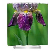 Why Does It Always Rain On Me? Shower Curtain by Juergen Roth