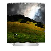 Wilbur The Pig Goes Home - 5D21059 Shower Curtain by Wingsdomain Art and Photography