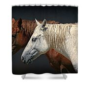 Wild Horses Shower Curtain by Daniel Hagerman