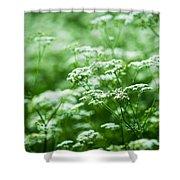Wild Vegetation Shower Curtain by Alexander Senin