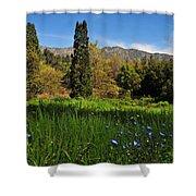 Wildflower Meadow at Descanso Gardens Shower Curtain by Lynn Bauer