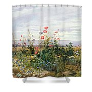 Wildflowers With A View Of Dublin Dunleary Shower Curtain by A Nicholl