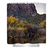 Willow Reflections Shower Curtain by Dave Dilli