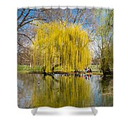 Willow Tree Water Reflection Shower Curtain by Matthias Hauser