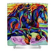 Wind Dancers Shower Curtain by Sherry Shipley