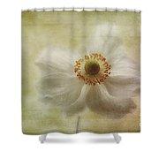 Windblown Shower Curtain by John Edwards
