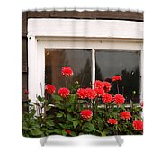 Window Box Delight Shower Curtain by Jordan Blackstone