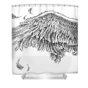 Wing Shower Curtain by Adam Zebediah Joseph
