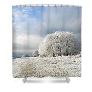 Winter Shower Curtain by Anne Gilbert