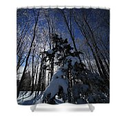 Winter Blue Shower Curtain by Karol Livote