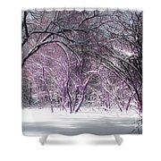 Winter Faeries Shower Curtain by Barbara McMahon