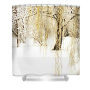 Winter Gold Shower Curtain by Julie Palencia