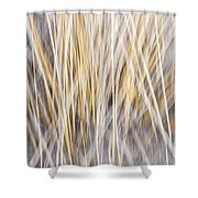 Winter grass abstract Shower Curtain by Elena Elisseeva