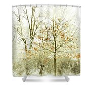 Winter Leaves Shower Curtain by Julie Palencia