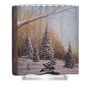 Winter Morning Shower Curtain by Rick Huotari
