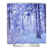 Winter Solace Shower Curtain by Tara Turner
